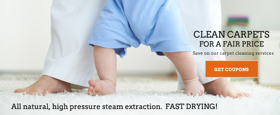 Angelo S Fabriclean Carpet Cleaning Vancouver Area Rug